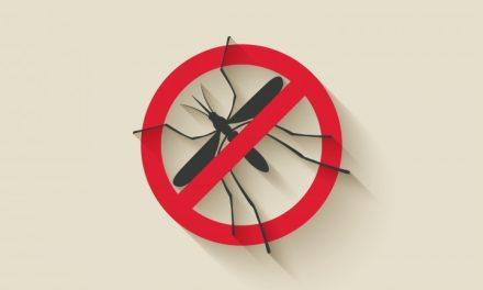 Armadilha para Mosquito