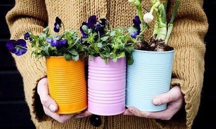 Horta com latas de tintas