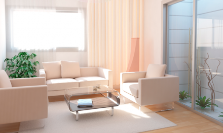 Feng Shui: Aprenda a harmonizar os ambientes da sua casa